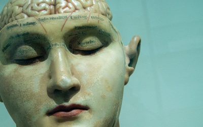 The Blank Slate Podcast, Episode Forty-Nine – Brain Training.