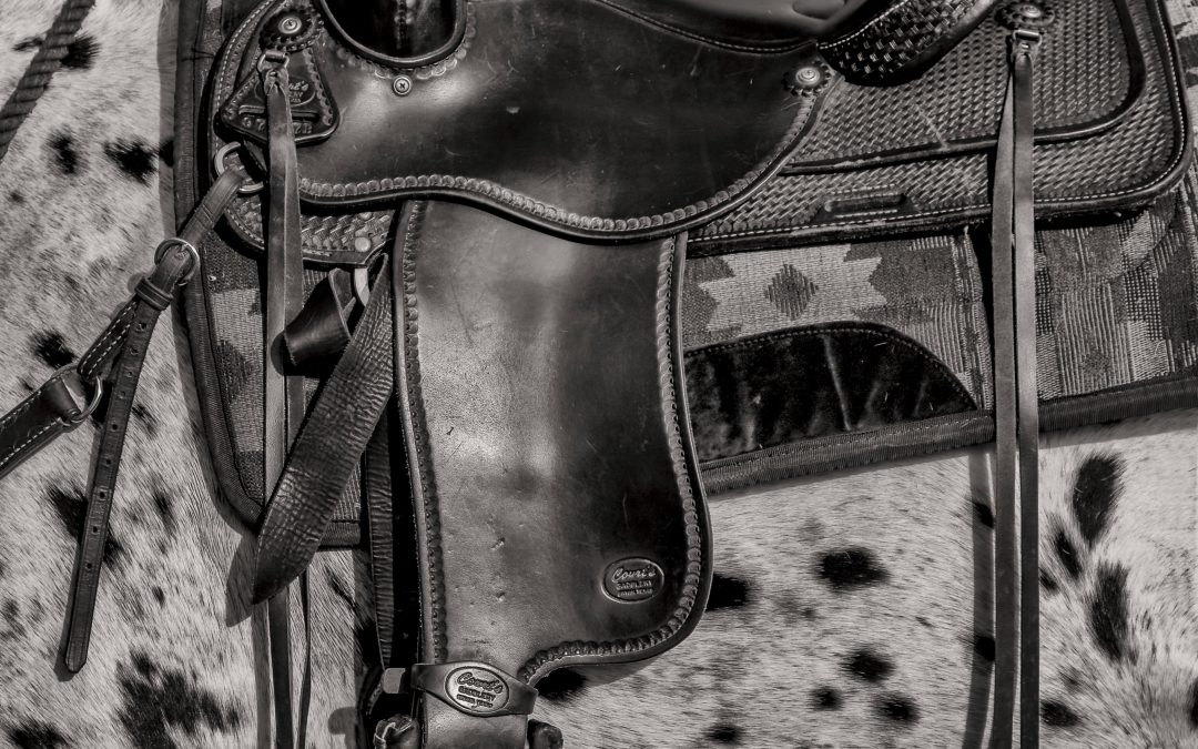 The Blank Slate Podcast, Episode Sixty-Three – Saddle Your Own Horse.